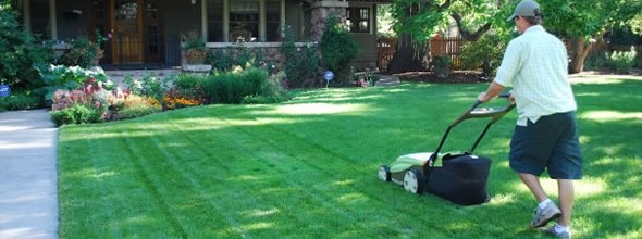 Solar Lawn Mowing Service in Raleigh