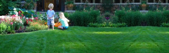 Organic Lawn Care - Clean Air Lawn Care